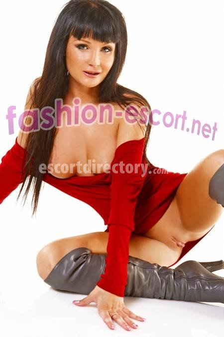 escort service sweden escortnet