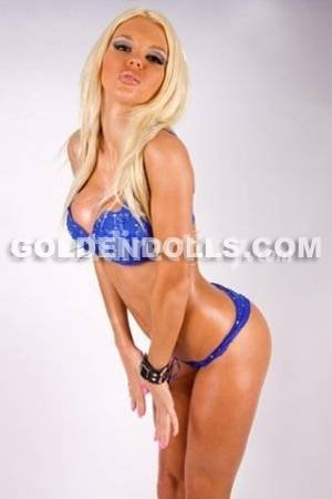 doll escort agency south africa
