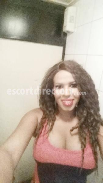 gay escort brazil porno joven gratis